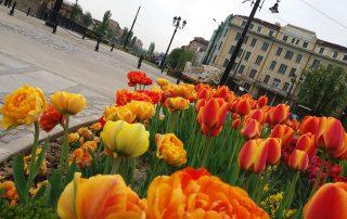 Пролет Лъвов мост