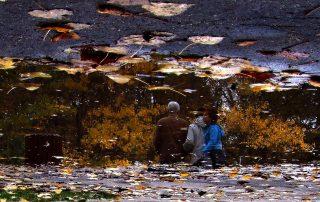 Огледални делници