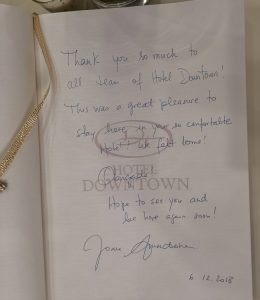 Joana Amendoeira Hotel Downtown book